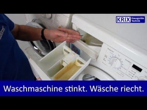Wachmaschine stinkt? Wäsche riecht? Einfach reinigen!